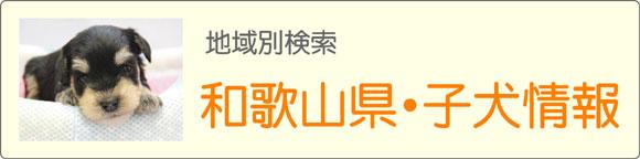 和歌山県ブリーダーの子犬販売情報検索