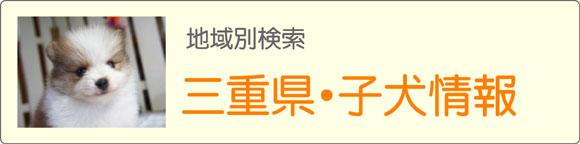 三重県ブリーダーの子犬販売情報検索